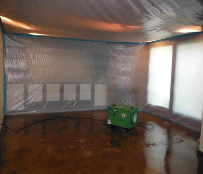 Mold Remediation in Hollywood