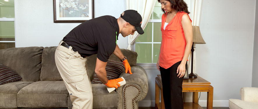 Whitley Heights, CA carpet upholstery cleaning