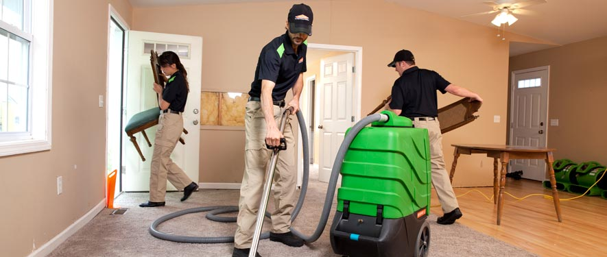 Whitley Heights, CA cleaning services